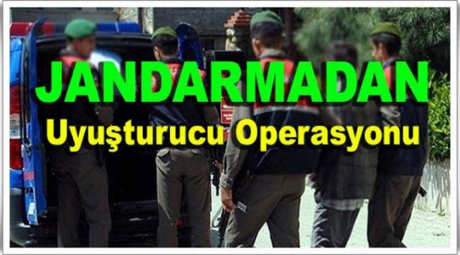 Alaşehir Jandarma Zehir Tacirlerine Göz Açtırmadı