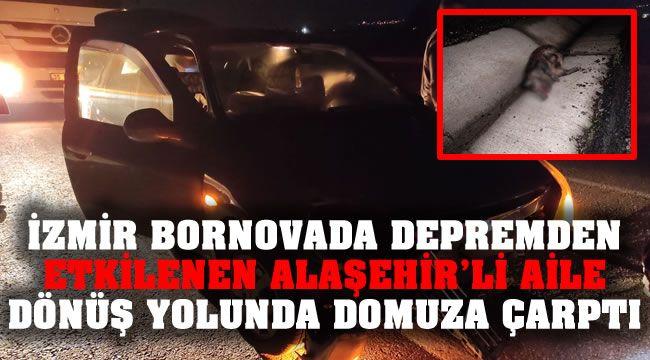 İzmir Depreminden Etkilenen Alaşehir'li Aile Dönüş Yolunda Domuza Çarptı