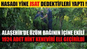 Alaşehir JSAT Dedektifleri 1924 kök hint keneviri ele geçirdi