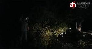 Alaşehir'de Dut Ağacı Otomobilin Üzerine Devrildi